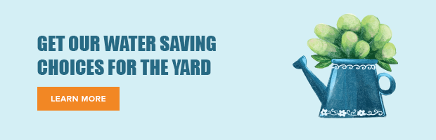 Get OUr Water Saving Choices For The Yard