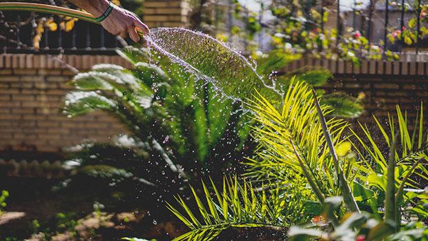 Water Saving Choice
